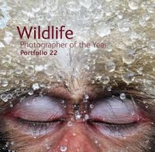 WILDLIFE:  Photographer of the Year (2012) published by the Natural History Museum