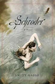 Schroder by Amity Gaige