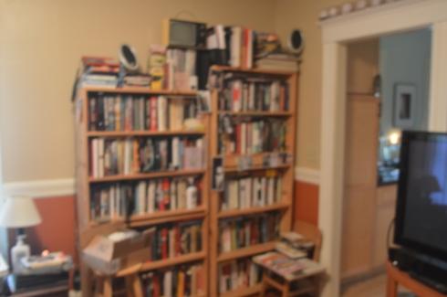 My Library —shelves #16 & 17 (so to speak) photo: Robert Birnbaum