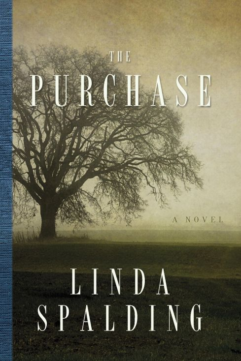 The Purchase by Linda Spalding.