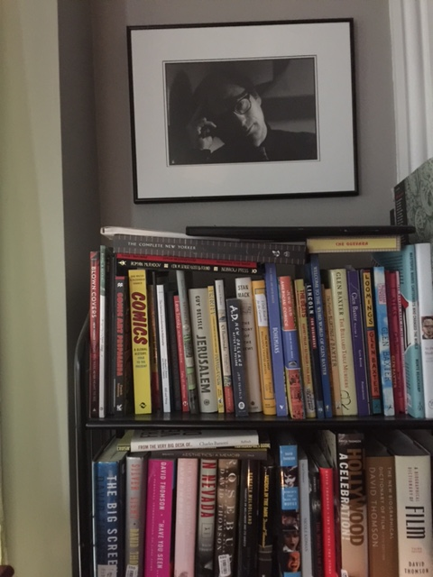 One  Bookshelf with photo of dead Cuban-American novelist [photo: RB]
