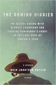 The Domino Diaries  by Brin Jonathan Butler