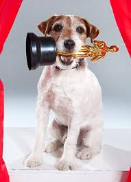 UGGIE,  star of  Academy Award winning 'The Artist'