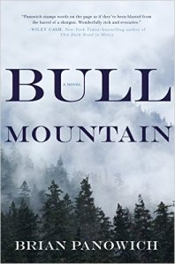 Bull Mountain  by Brian Panowich