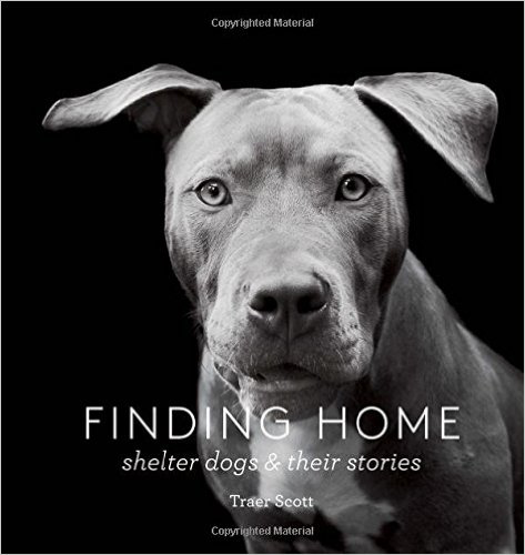 Finding Home: Shelter Dogs and Their Stories  by Traer Scott