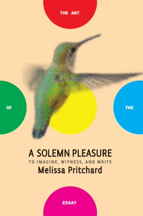 A Solemn Pleasure by Melissa Pritchard