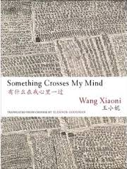 Something Crosses My Mind  by Wang Xiaoni