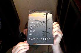 A Hand Reached Down to Guide Me: Stories and a novella   by David Gates